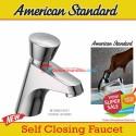 American Standard EasyFlo Keran wastafel push tombol on off BLACK